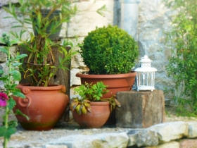 detail-jardin-champvans